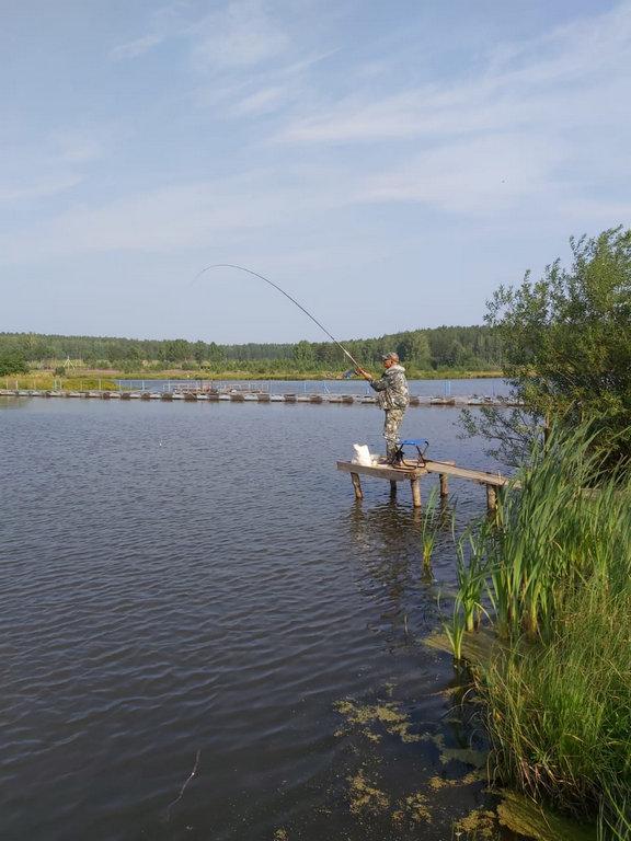 Рыбалка на карпа Шабровский пруд Екатеринбург