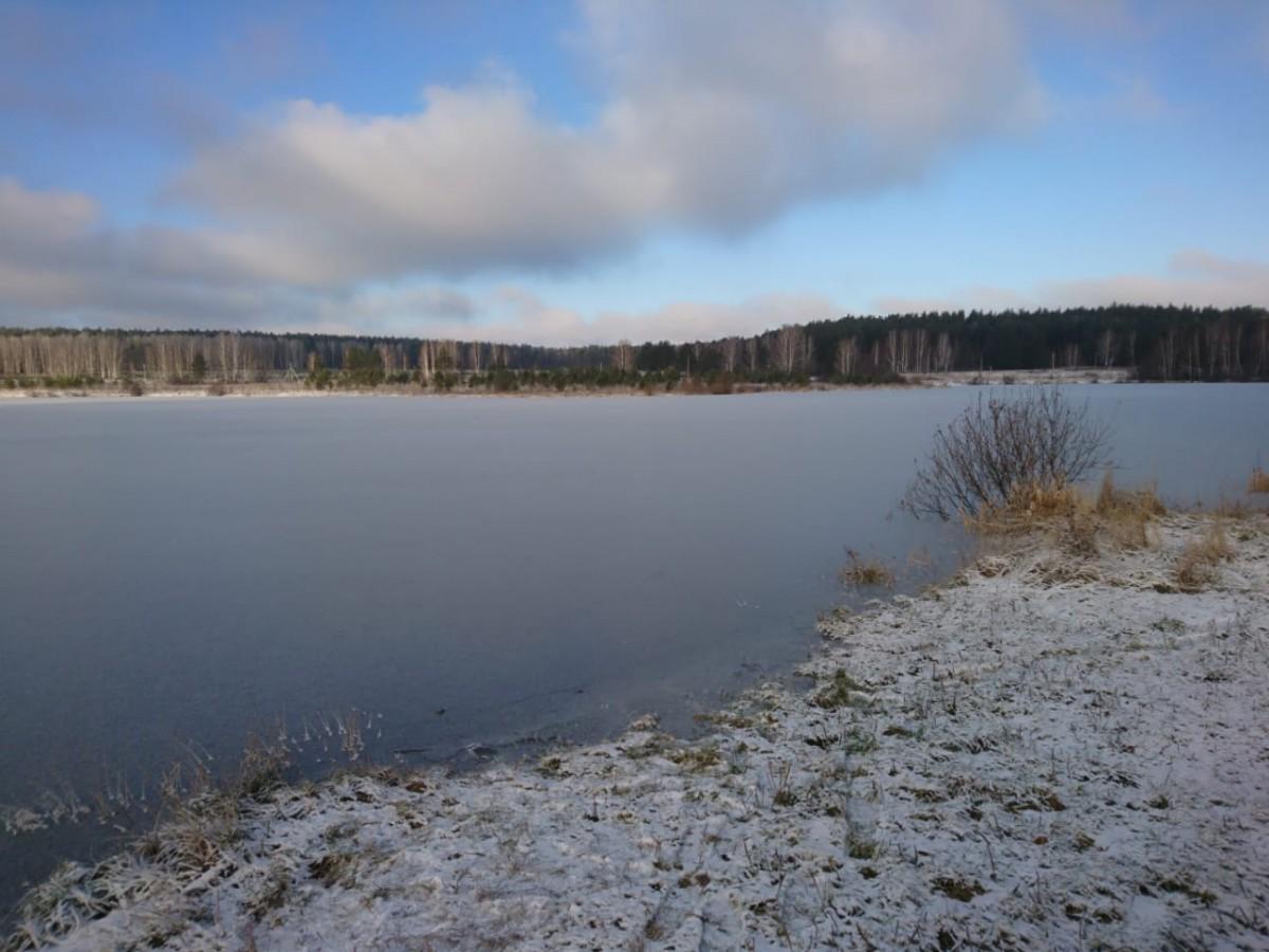 Первый лёд на Шабровском пруду Платная рыбалка Екатеринбург
