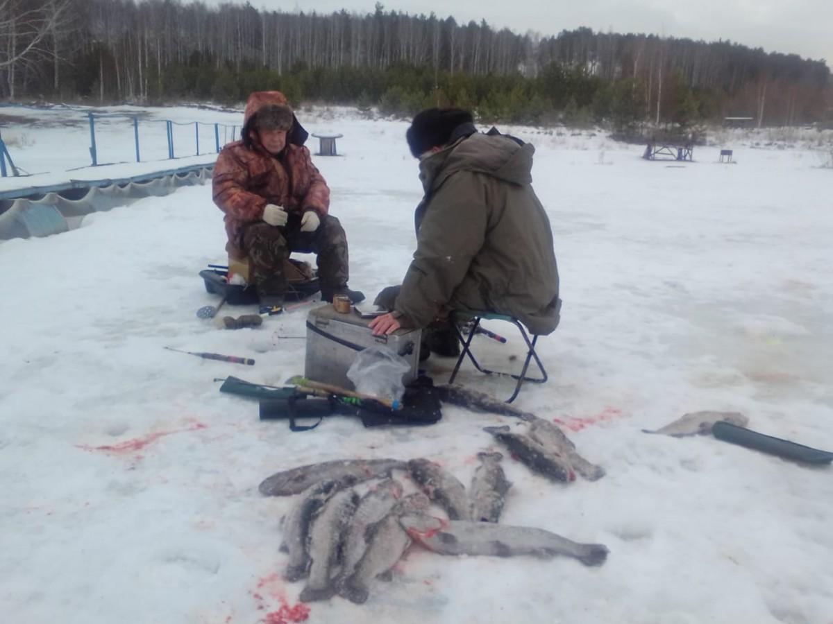 зимняя рыбалка форель