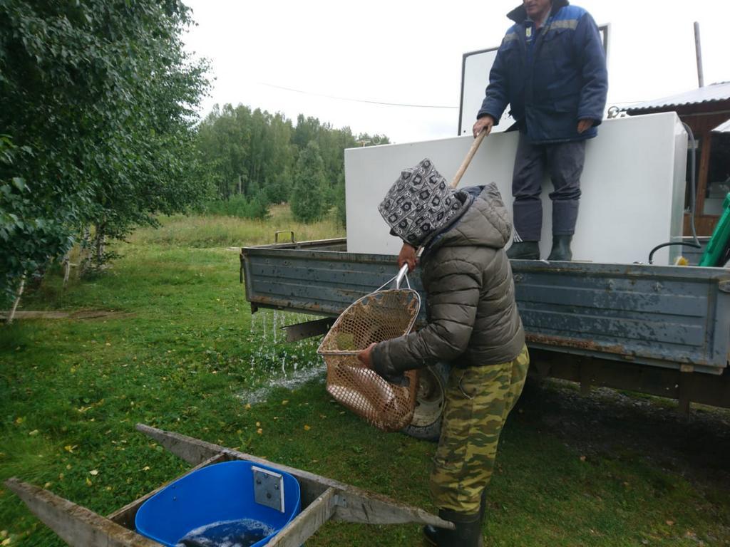 рыбалка на форель екатеринбург Шабровский пруд Екатеринбург
