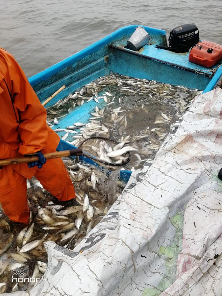 Зимняя рыбалка в ЕкатеринбургеРыбалка на СигаЗимняя рыбалка в Свердловской областиПлатная рыбалка Екатеринбург