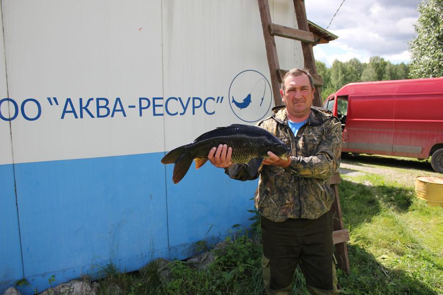 Зарыбление Карп Шабровский пруд в Вип сектор
