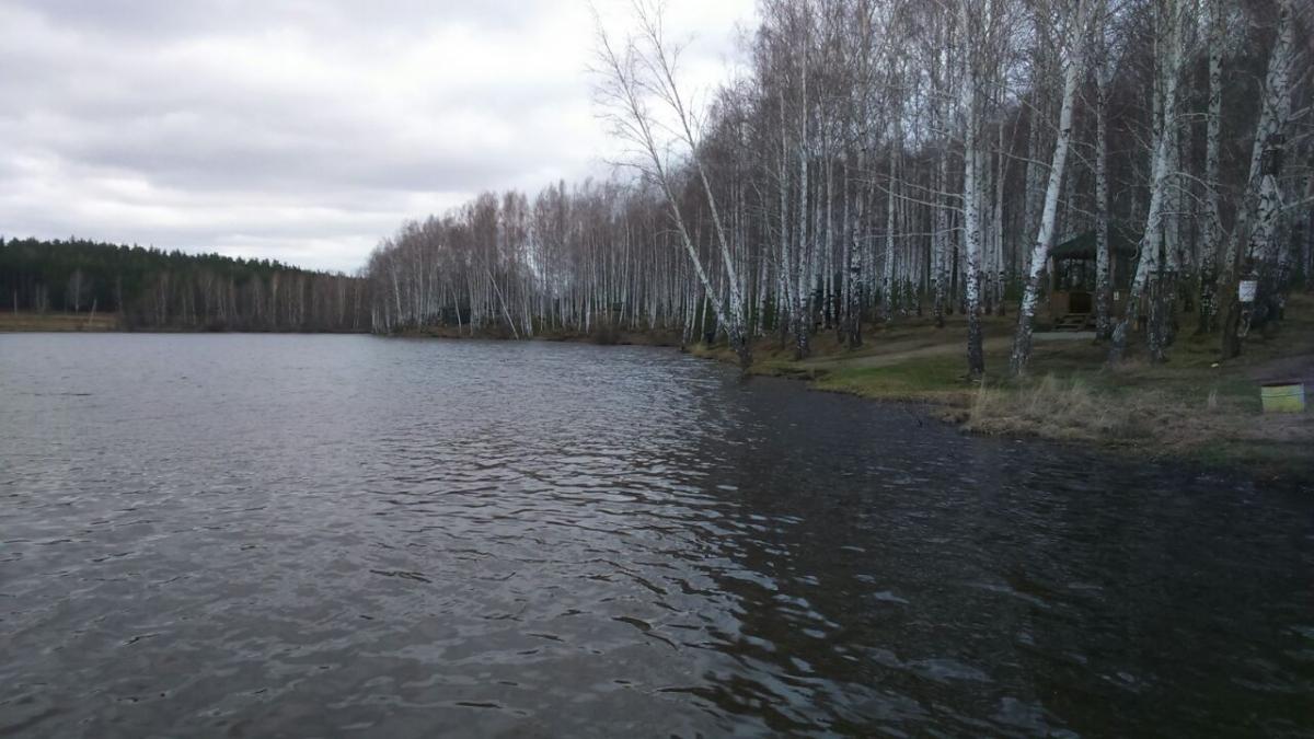 Шабровский пруд - основной водоём