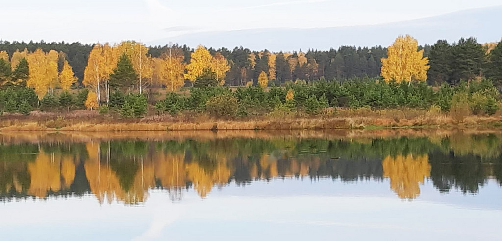 отчеты отзывы рыбалка екатеринбург свердловская область шабровский пруд платная рыбалка