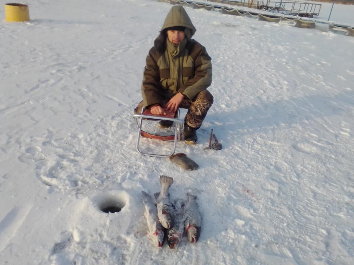 зимняя рыбалка на форель со льда фото