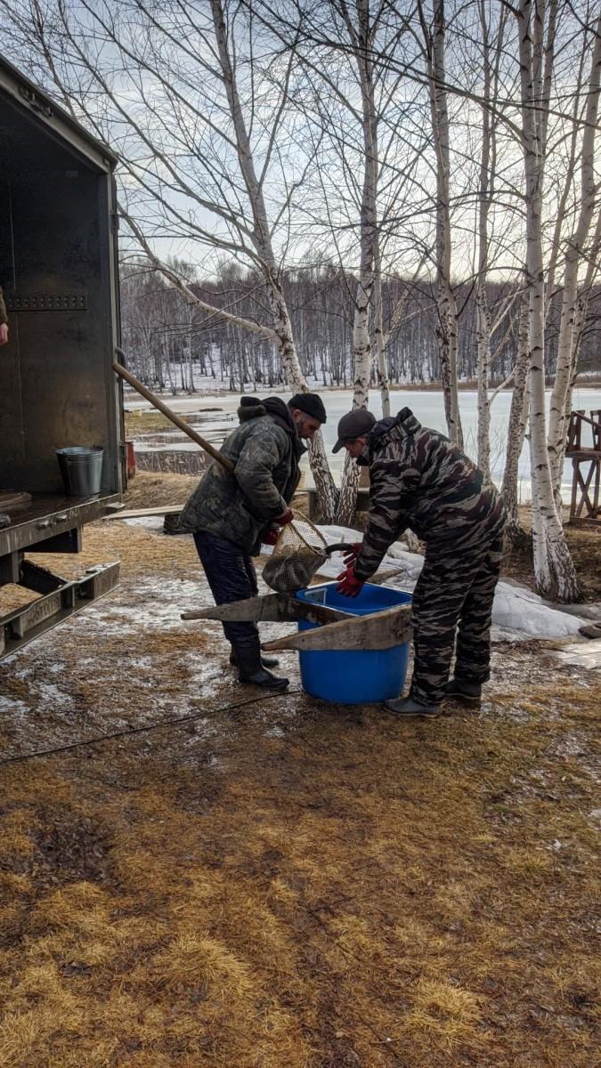 Рыбалка в Свердловской области Екатеринбург на Шабровском пруду