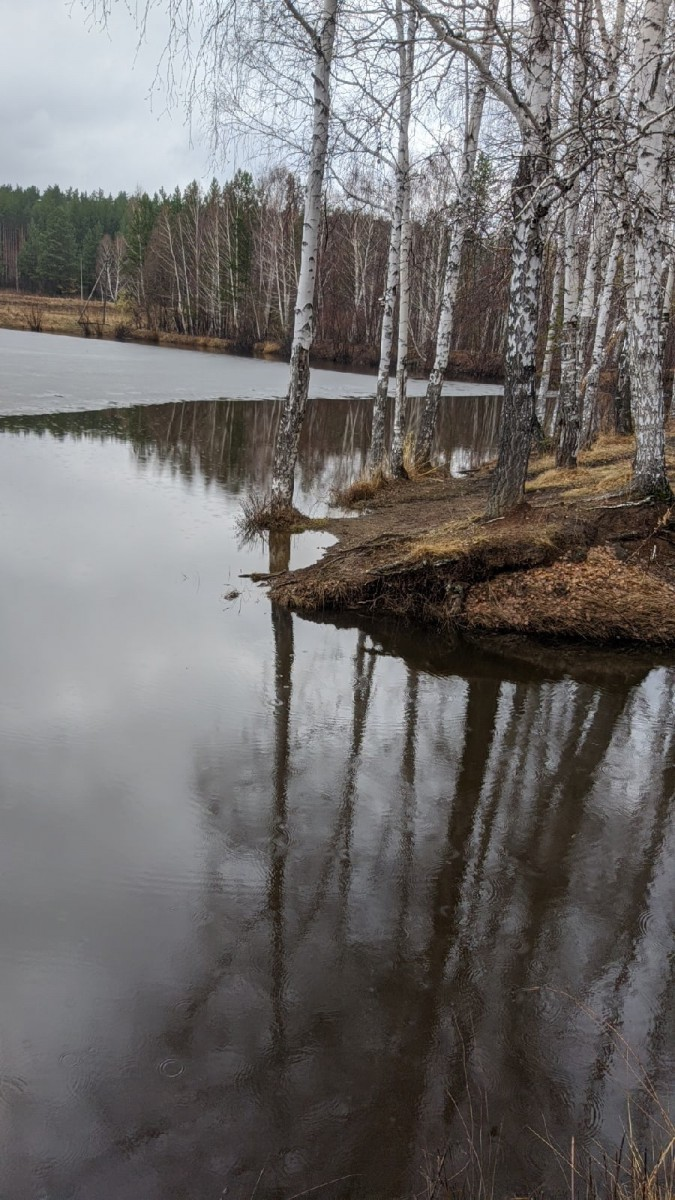 Рыбалка в Свердловской области на Шабровском пруду
