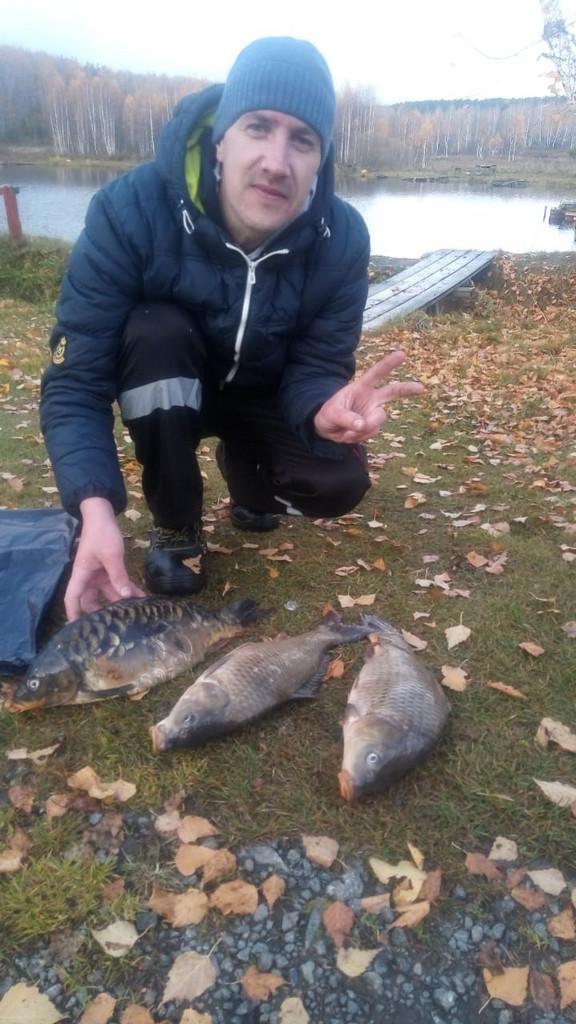 ловля карпа свердловская область екатеринбург Шабровский пруд